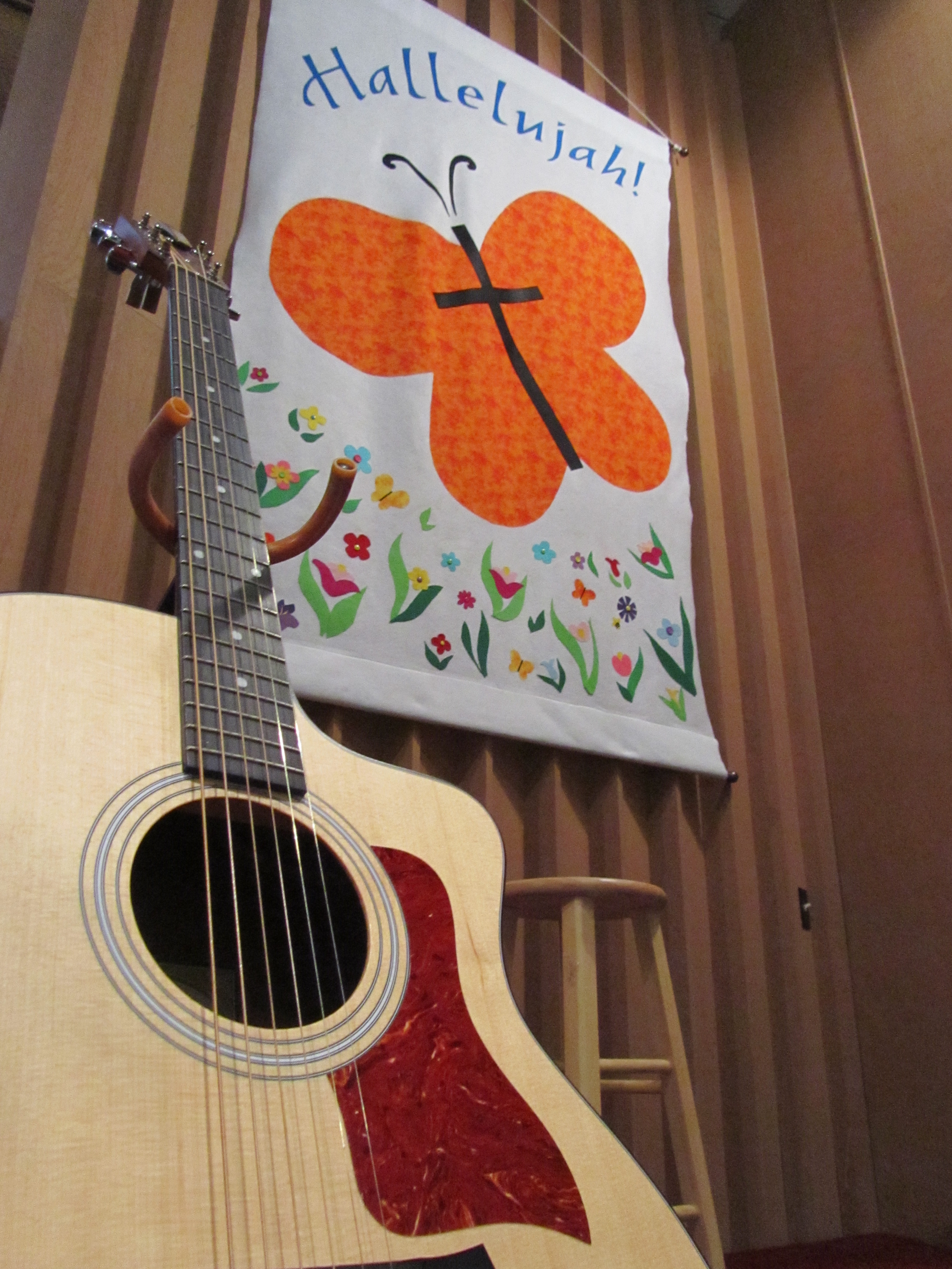 Guitar and Butterfly Banner
